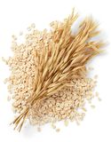 Oats. Bundle of oat plant with oatmeal isolated on white stock image