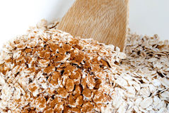 Oats and Cinnamon, up close Royalty Free Stock Image