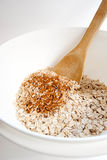 Oats and Cinnamon, vertical Royalty Free Stock Photos
