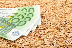 Oats and euro banknotes Stock Image