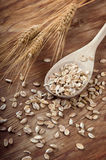 Oats and grain Royalty Free Stock Images