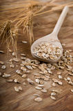 Oats and grain Stock Images