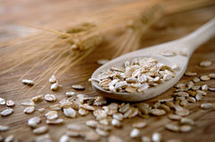 Oats and grain Stock Photos
