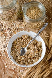 Oats and grain Royalty Free Stock Photos