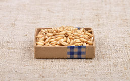Oats on linen Royalty Free Stock Photo