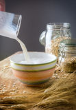 Oats and milk Royalty Free Stock Photo