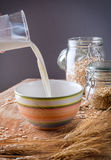 Oats and milk Royalty Free Stock Photography