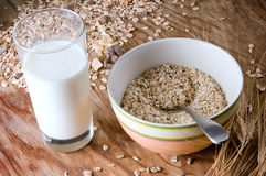 Oats and milk Royalty Free Stock Image
