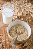 Oats and milk Royalty Free Stock Photos