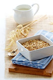 Oats and milk for breakfast Royalty Free Stock Photos