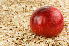 Oats and plum Royalty Free Stock Image