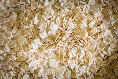 The oats rice in white bowl on top table wood worm tone image. Oats rice in white bowl on top table wood worm tone image royalty free stock image