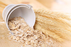 Oats in a small bucket Stock Photography