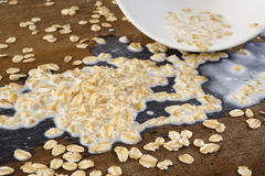 Oats was damaged on wooden Royalty Free Stock Photo