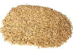 Oats (whole groats) Stock Photos