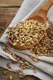Oats in a wooden spoon Stock Photography