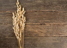 Oats on wooden surface Stock Photography