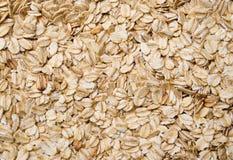 oatsmodell Arkivbild