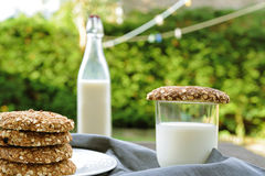 Oaty biscuits with milk Royalty Free Stock Photos