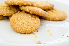 Oaty Biscuits on White Plate Royalty Free Stock Photo