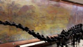 Oavkortad tillväxt för dinosaurier Dinosaurieben lager videofilmer