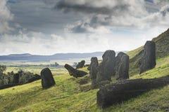 Oavslutade Moai statyer i ett villebråd Royaltyfri Foto