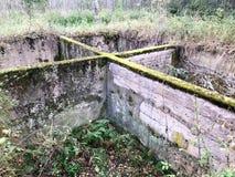 Oavslutat underjordiskt fundament för gammalt konkret cementcement av en förstörd byggnad som är bevuxen med grön mossa fotografering för bildbyråer