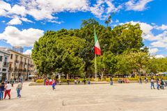 Oaxaca de Jearez, Mexico royaltyfri bild
