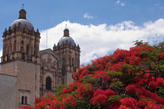 Oaxaca old town. In mexico in hot summer Stock Image