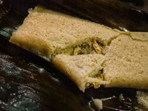 Oaxacan-gebroken stijl Mexicaanse tamale open aan vertoningskip vullen, gekookt in banaanblad Mexicaans voedsel, reis in Mexico stock fotografie