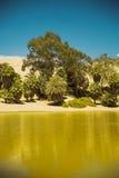 Oaza Huacachina w pustyni Ica Obraz Royalty Free