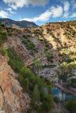 Oaza na drodze Immouzer blisko Agadir Maroko Fotografia Stock