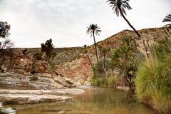 Oaza na drodze Immouzer blisko Agadir Maroko Obraz Royalty Free