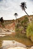 Oaza na drodze Immouzer blisko Agadir Maroko Fotografia Royalty Free