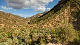 Oaza na drodze Immouzer blisko Agadir Maroko Zdjęcia Royalty Free