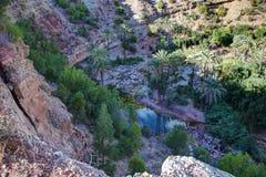 Oaza na drodze Immouzer blisko Agadir Maroko Zdjęcie Royalty Free