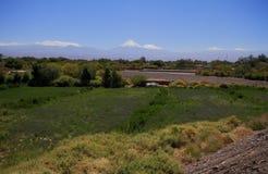 oaza od San Pedro De Atacama Fotografia Stock