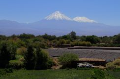 oaza od San Pedro De Atacama Obraz Stock