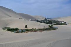 oaza Peru Zdjęcie Stock