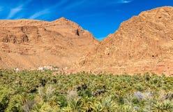 Oaza Todra rzeka przy Tinghir, Maroko obraz stock