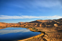 Oaza w pustyni Zdjęcia Stock