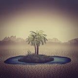 Oaza w Pustyni Obraz Stock