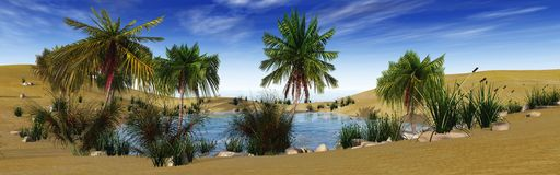 Oaza w pustyni, drzewkach palmowych i jeziorze, Fotografia Royalty Free