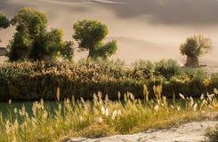 Oaza w pustyni przy Mingsha shanem Fotografia Stock