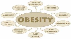 Obésité Photos libres de droits