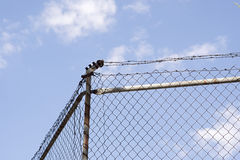 obóz płotu, utrzymanie nie więziennego wtargnięcie ochrony Zdjęcia Royalty Free