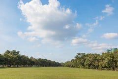 Obłoczny greenfield i niebieskie niebo obraz royalty free