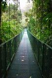 Obłoczny lasowy zawieszenie most obraz royalty free