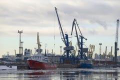 Obłoczny Luty ranek przy St Petersburg ładunku portem Obraz Royalty Free