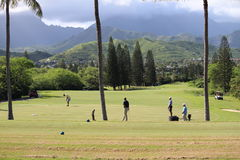 Obama playing golf Hawaii. President Obama playing golf during christmas 2013 in Hawaii Royalty Free Stock Image